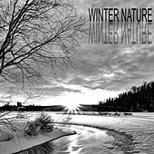 Winter Nature by Nature Sounds (1)
