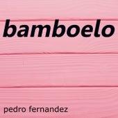 Bamboleo by Pedro Fernandez