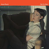 Not So Bad by Anna Burch