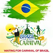 Brazil Carnival von Various Artists