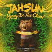 Heavy in the Chest de Jah Sun