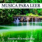 Musica para leer - Sonidos de la naturaleza: Música relajante para estudiar, música para un enfoque profundo, meditación, concentración y la mejor música de estudio de Musica Para Leer
