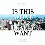 Is This What You Really Want? by The Manor