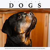 Music For Dogs: Soft Piano Music For Dogs Ears, Pet Relaxation, Pet Therapy, Music For Pets and The Best Dog Music de Music For Dogs