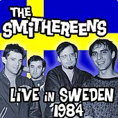 Live in Sweden 1984 by The Smithereens
