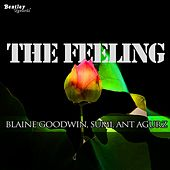 The Feeling von Blaine Goodwin