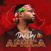 Africa de David Jay