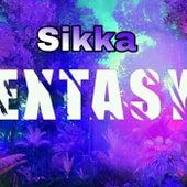 Extasy (Radio Edit) de Sikka