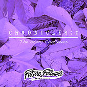 Chronicles 2 : The Story Continues by Various Artists