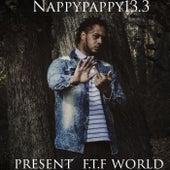Present F.T.F World de Nappy Pappy13.3