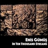 In Ten Thousand Streams von Enis Gümüş