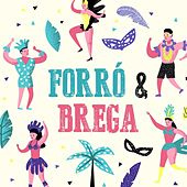 Forró & Brega de Various Artists
