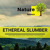 Ethereal Slumber - Nature Music for Treating Insomnia de Various Artists
