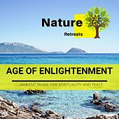 Age of Enlightenment - Ambient Music for Spirituality and Peace de Various Artists