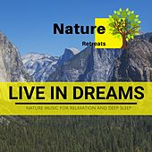 Live in Dreams - Nature Music for Relaxation and Deep Sleep de Various Artists
