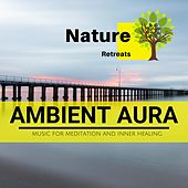 Ambient Aura - Music for Meditation and Inner Healing de Various Artists