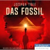 Das Fossil von Joshua Tree