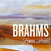 Brahms Famous Pieces by Various Artists