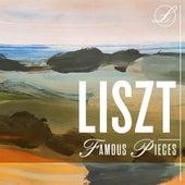 Liszt Famous Pieces de Various Artists