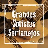 Grandes solistas sertanejos de Various Artists
