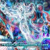 Principle of Conscious Dance de Patrick Bernard