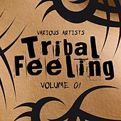 Tribal Feeling, Vol. 1 by Various Artists