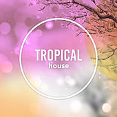 Tropical House by Ibiza Lounge, Chillout Lounge, Tropical House