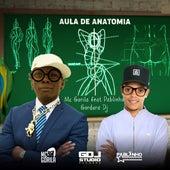 Aula de Anatomia de Mc Gorila