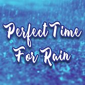 Perfect Time for Rain de GRiZ