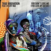 You Don't Love Me (You Love My Guitar) [feat. Sylent Nqo] by True Vibenation