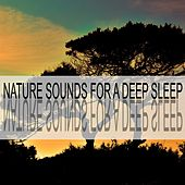 Nature Sounds for a Deep Sleep by Nature Sounds (1)