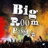 Big Room Passion by Various Artists