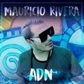 Adn de Mauricio Rivera, Andres Sanches