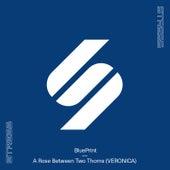 A Rose Between Two Thorns (VERONICA) von Blueprint