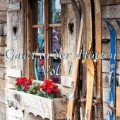 Gaudi in der Hütt'n, Vol. 1 de Various Artists