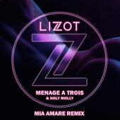 Menage A Trois (Mia Amare Remix) by Lizot