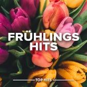 Frühlingshits von Various Artists