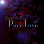 Pure Love by Bishop David G Evans