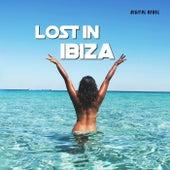 Lost in Ibiza de Various Artists