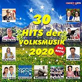 Hits der Volksmusik 2020 by Various Artists