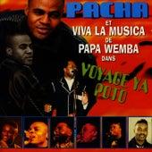Voyage Ya Poto de Pacha Massive
