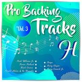 Pro Backing Tracks H, Vol. 3 - Karaoke Version Originally Performed By Various Artists by Pop Music Workshop