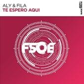 Te Espero Aqui by Aly & Fila