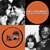 Ain't Love Enough: The Best of Attitudes von Attitudes