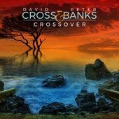 Crossover de David Cross