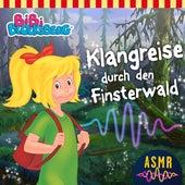 Klangreise durch den Finsterwald (ASMR) von Bibi Blocksberg