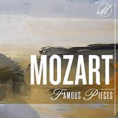 Mozart Famous Pieces by Various Artists