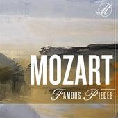 Mozart Famous Pieces di Various Artists