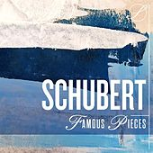 Schubert Famous Pieces by Various Artists