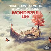 Wonderful Life by Marc Korn